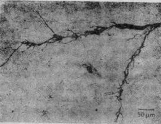 腐蝕檢測|金屬腐蝕試驗|局部腐蝕測試
